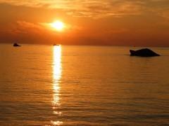 Das Sonnenlicht ist der Taktgeber für unseren Schlaf-Wach-Rhythmus.
